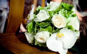 Картинка цветы, розы, букет, белые, орхидея