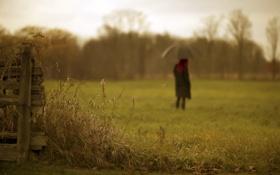 Картинка поле, трава, фон, забор