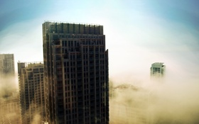 Обои небо, туман, небоскрёбы, Mist VS