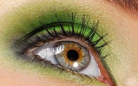 Обои зелень, лицо, глаз