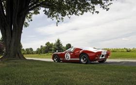Обои дорога, поле, трава, дерево, Ford GT40