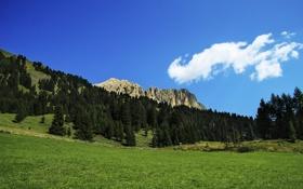 Картинка долина, Альпы, Италия, один из самых привлекательных ландшафтов, Campitello, подножье Сассолунго и Коль Роделла