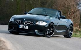 Обои дорога, чёрный, тюнинг, BMW, БМВ, спорткар, кусты