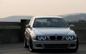 Обои фары, BMW, БМВ, серебристая, ангельские глазки, бумер, E39