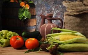 Обои кукуруза, кувшин, бочка, мешок, овощи, персики, помидоры