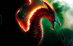 Обои тьма, огонь, пламя, dragon