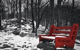 Обои снег, парк, скамья