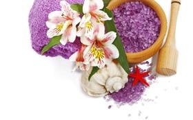 Обои цветы, лилии, relax, flowers, спа, lily, spa