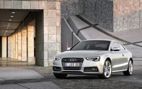 Обои Audi, ауди, здание, купе, автомобиль