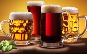 Обои пена, обои, пиво, кружки, темное, wallpapers, 1920x1080
