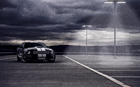 Картинка дождь, MUSTANG, Shelby GT