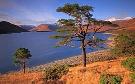 Обои природа, солнечно, озеро, деревья, холмы