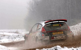 Обои Ford, Зима, Авто, Снег, Спорт, Форд, Гонка