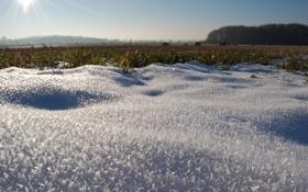 Обои зима, солнце, снег, фото, утро, обои для рабочего стола, зимние обои
