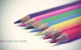 Обои мир, карандаши, разноцветные, разукрась, пожалуйста, мой