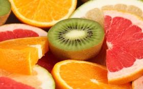 Обои апельсины, фрукты, лайм, киви, грейпфрут