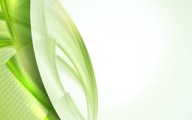Обои линии, узор, зеленая абстракция