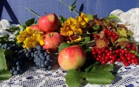 Картинка яблоки, виноград, калина