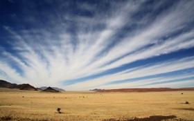 Обои небо, облака, горы, пустыня, равнина, африка, намибия