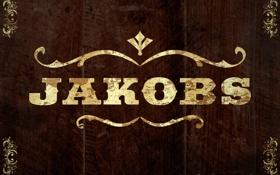 Картинка фон, Borderlands 2, Jakobs, Джейкобс, бордерлендс, производитель оружия