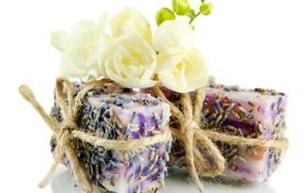 Обои цветок, работа, нежность, мыло, белый фон, flower, soap