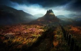 Картинка пейзаж, осень, трава, пасмурно, забор, дорога, деревья