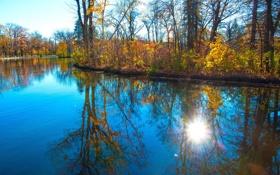 Картинка осень, деревья, пруд, парк, отражение