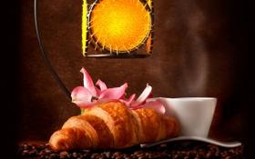 Обои кофе, кофейные зерна, аромат, coffee, круассаны, pink flowers, croissants