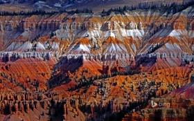 Картинка США, пейзаж, Юта, деревья, горы, Cedar Breaks National Monument