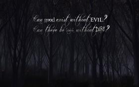 Обои лес, страх, надпись, обои