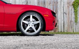 Обои красный, Chevrolet, Camaro, red, шевроле, мускул кар, камаро
