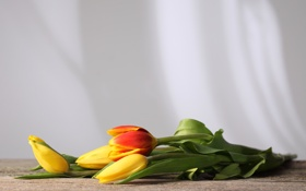 Картинка цветы, стол, стебли, тюльпаны