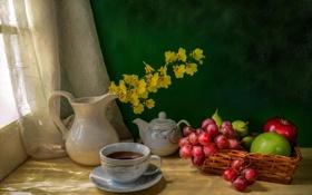 Картинка цветы, стол, чай, желтые, окно, кружка, кувшин