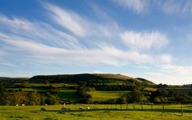 Картинка лето, небо, трава, облака, пейзаж, холмы, вид