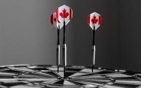 Картинка дартс, канада, черно-белое, флаг