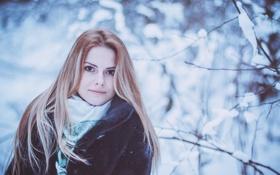 Картинка Девушка, Зима, Снег, глаза, холод