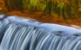 Обои осень, отражение, река, Англия, пороги, Девон