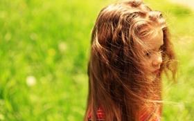 Обои зелень, трава, солнце, природа, дети, фон, обои