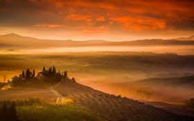 Картинка деревья, туман, дом, холмы, поля, Италия, Тоскана
