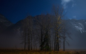 Картинка небо, звезды, деревья, горы, ночь, туман