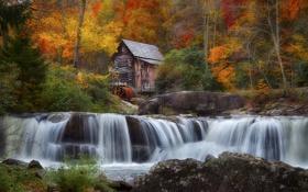 Обои осень, лес, деревья, дом, река, колесо, мельница
