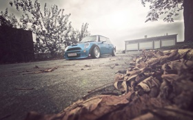 Обои осень, mini cooper, wallpapers auto, auto, листья, cars, Blue