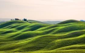 Обои трава, деревья, дом, холмы, Италия, Тоскана