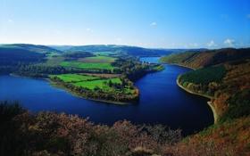 Обои лес, природа, река, вид, поля