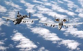 Обои Облака, Самолет, США, Авиация, ВВС, A-10, Thunderbolt