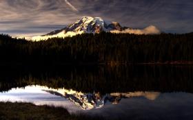 Обои лес, небо, озеро, гора