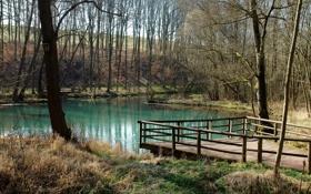 Обои озеро, пруд, скворечник, мостик