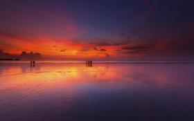 Обои закат, пейзаж, пляж, горизонт, океан