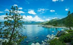 Обои озеро Тахо, камни, деревья, природа, Сьерра-Невада, горы, США