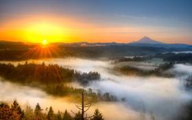 Обои небо, пейзаж, закат, природа, туман